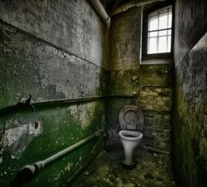 toilettes10